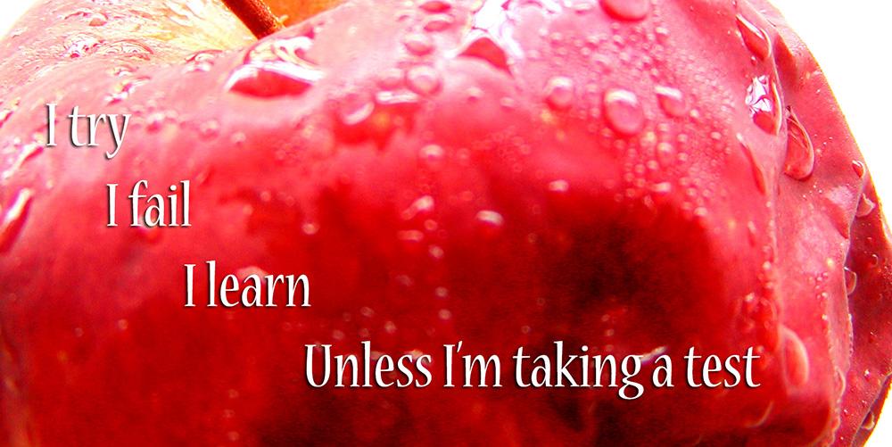 Try Fail Learn